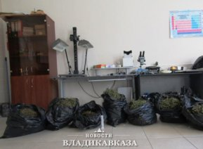 13 кг марихуаны изъято у жителя Владикавказа